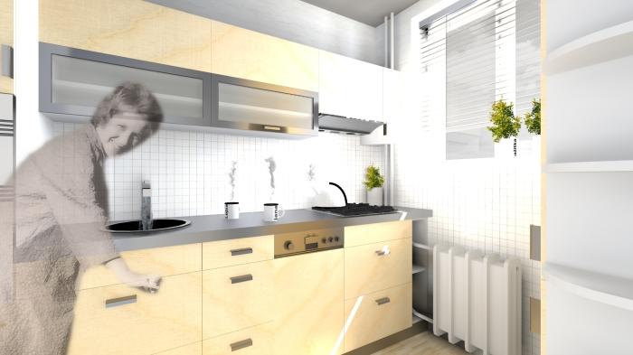 kuchyněB_vizualizace1_c